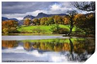 Reflections At Loughrigg Tarn, Print