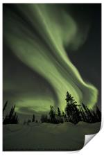 Northern Lights over the Midnight Dome, Print