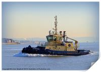 Tugboat Svitzer Nari, Print