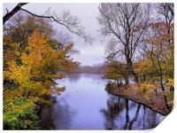 Autumn in the Park, Print