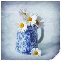 Daisies in a blue Jug, Print