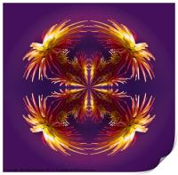 Abstract flower pattern , Print