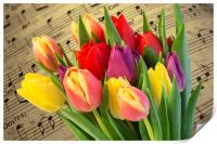 Tulips And Music, Print