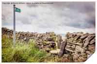 Derbyshire Path, Print