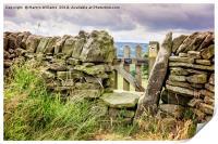Stone Wall, Derbyshire, Print
