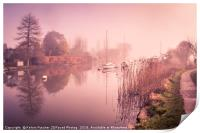 Misty, Morning Tranquility, Print