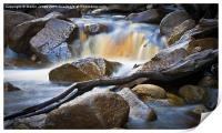 Moorland Stream, Print