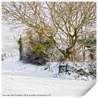 Snow In Mylor Bridge, Print