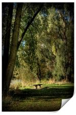 Seat of Meditation, Print
