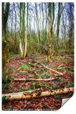 Golden Acre Woods, Print