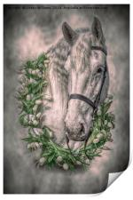 Horse 2, Print