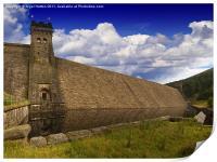 This Magnificent Dam, Print