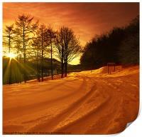 Winter World, Print