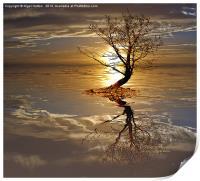 Reflections, Print