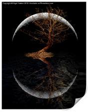 Rising Moon, Print