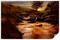 Ladybower Brook, Print