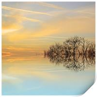 Heavenly branches, Print