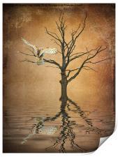 Golden Owl, Print