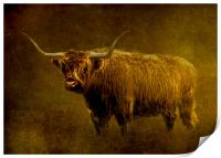 Highlander, Print