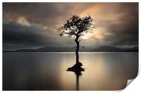 Loch Lomond Sunset, Print