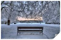 Snow, Highgate Wood, Print
