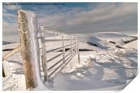 Frozen Gate, Print