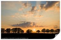 Little Marcle Sunset, Print