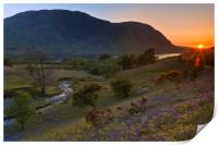Rannerdale Valley Bluebells at Sunset, Print