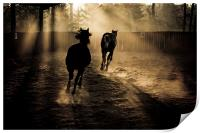 the chase, Print