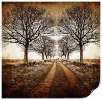 stark winter avenue, Print