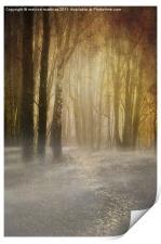 spooky misty woodland, Print