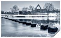 Bolton Abbey Reflections, Print