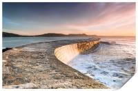 Sunkissed Cobb at Lyme Regis, Print