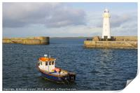 The lighthouse at Donaghadee Harbour, Print
