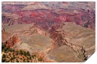 Grand Canyon, Print