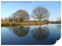 River Stour, Reflections    , Print