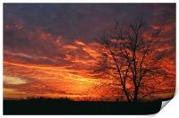 Autumn Sunset, Print