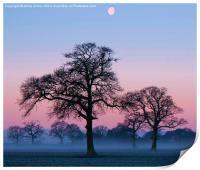 Mist And Moon, Print