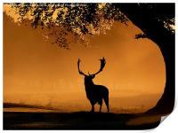 Fallow buck Silhouette, Print