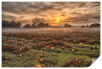 Pumpkins At Dusk, Print