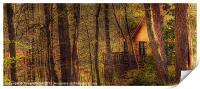 House in the Wood, Print