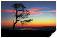 The Beauly Firth, Print
