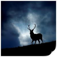 The stag, Print