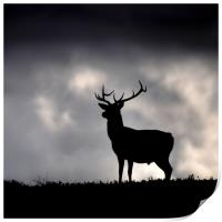 Stag silhouette, Print