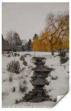 Golden Winter, Print