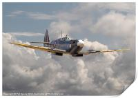 Spitfire - portrait of an icon, Print