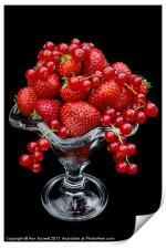 Summer Fruits, Print