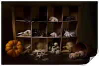 Halloween Collection, Print