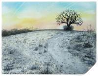 Snowy Oak, Print