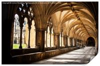Norwich Cathedral Cloister Walks, Print